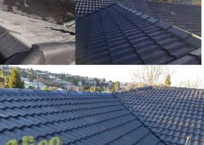 Auckland roof painting by Nice Paint Co
